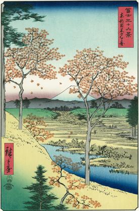 hiroshige197.jpg